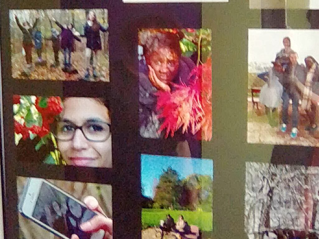 Atelier photo : thème les 4 saisons – Externat Médico Professionnel (EMPRO) Les Résonances